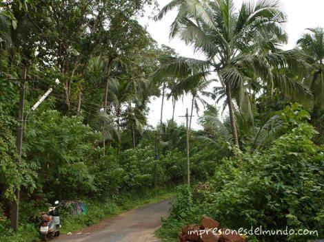 camino-Goa-impresiones-del-mundo