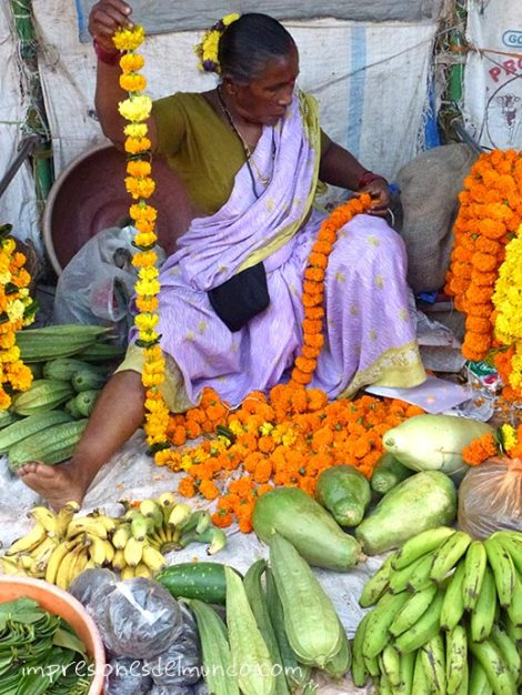 florista-canacona-Goa-impresiones-del-mundo