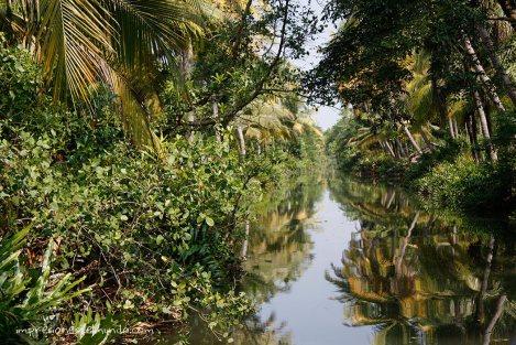 backwaters-3-Kerala-impresiones-del-mundo