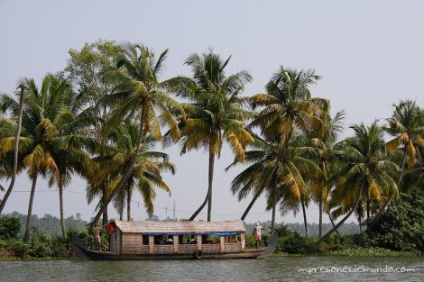 backwaters-6-Kerala-impresiones-del-mundo