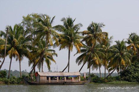 backwaters-6-Kerala-impresiones-del-mundo
