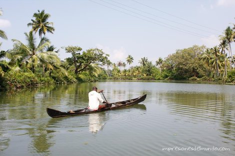 backwaters-7-Kerala-impresiones-del-mundo
