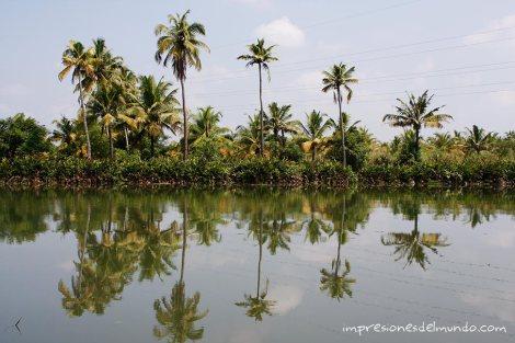 backwaters-9-Kerala-impresiones-del-mundo
