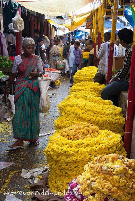 mercado-1-Mysore-Impresiones-del-mundo