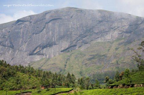 montaña-Munnar-impresiones-del-mundo