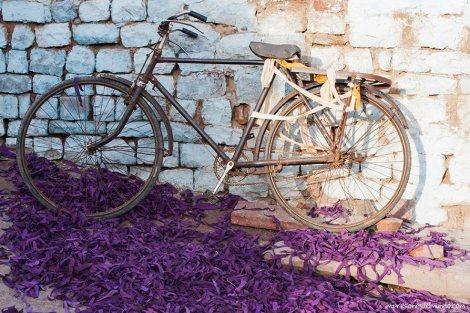 bicicleta-Fatehpur-Sikri-impresiones-del-mundo