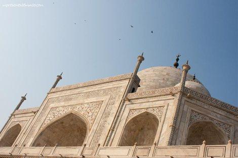 pajaros-Taj-Mahal-Agra-impresiones-del-mundo