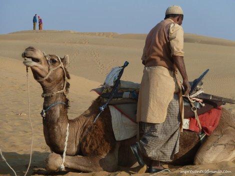 camellero-desierto-Thar-impresiones-del-mundo