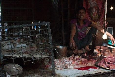 polleria-Calcuta-impresiones-del-mundo