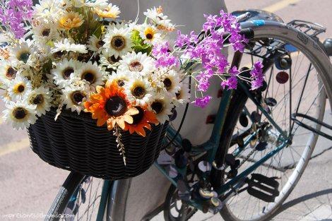 bicicleta-Melbourne-impresiones-del-mundo