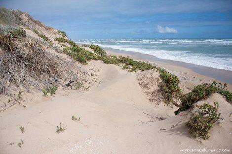 dunas-playa-Australia-impresiones-del-mundo