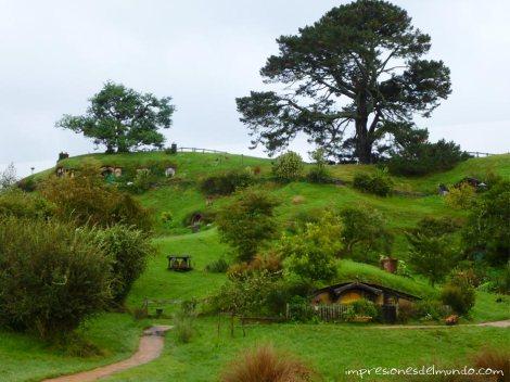 Hobbiton-panorama-Nueva-Zelanda-isla-norte-impresiones-del-mundo