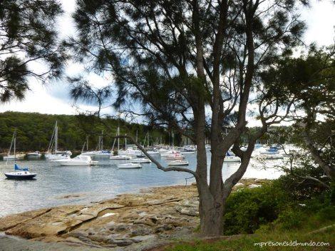 paseo-playa-Manly-Sydney-impresiones-del-mundo