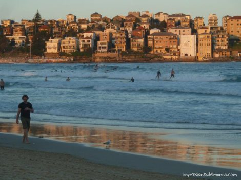 playa-surfistas-Bondi-Sydney-impresiones-del-mundo