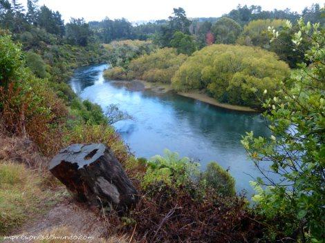 rio-azul-Nueva-Zelanda-isla-norte-impresiones-del-mundo