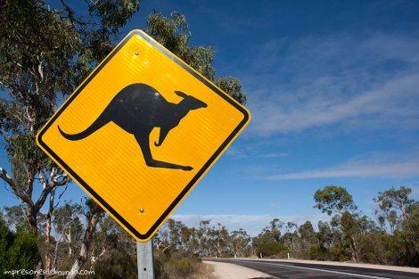 señal-canguro-Australia-impresiones-del-mundo