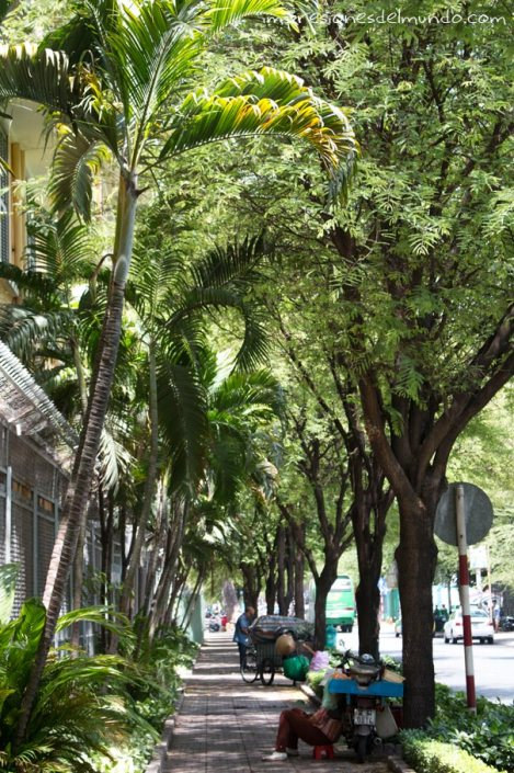 aceras-arboladas-Saigon-Impresiones-del-mundo