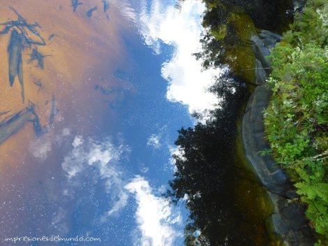 colores-Nueva-Zelanda-isla-sur-impresiones-del-mundo
