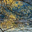 lago-Queenstown-Nueva-Zelanda-isla-sur-impresiones-del-mundo