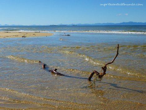 playa-Nueva-Zelanda-isla-sur-impresiones-del-mundo