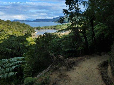 sendero-playa-Nueva-Zelanda-isla-sur-impresiones-del-mundo