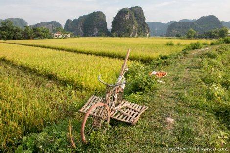 bicileta-vieja-Tam-Coc-impresiones-del-mundo