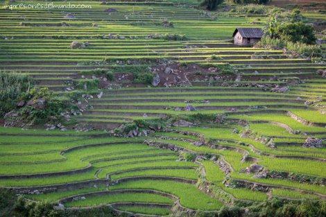 casa-y-arrozal-Sapa-impresiones-del-mundo