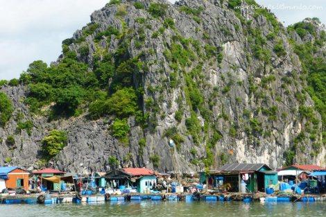 casas-de-pescadores-Cat-Ba-island-impresiones-del-mundo