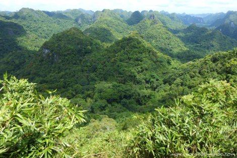 parque-nacional-Cat-Ba-island-impresiones-del-mundo