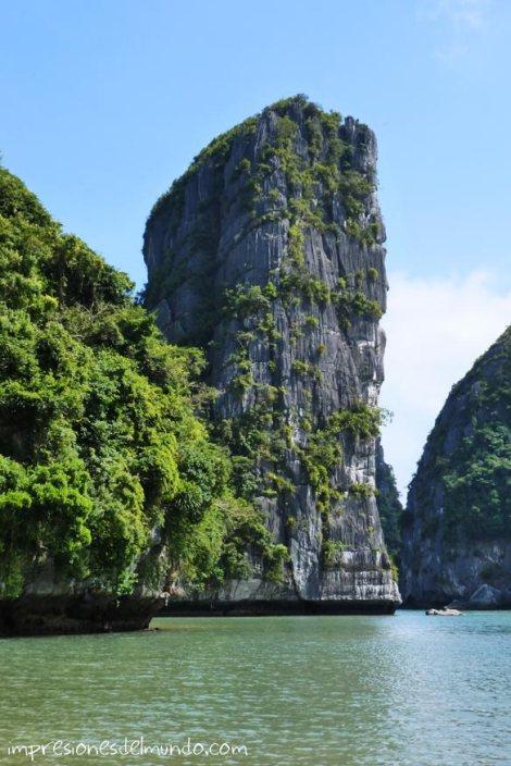 Roca-en-el-agua-Cat-Ba-island-impresiones-del-mundo