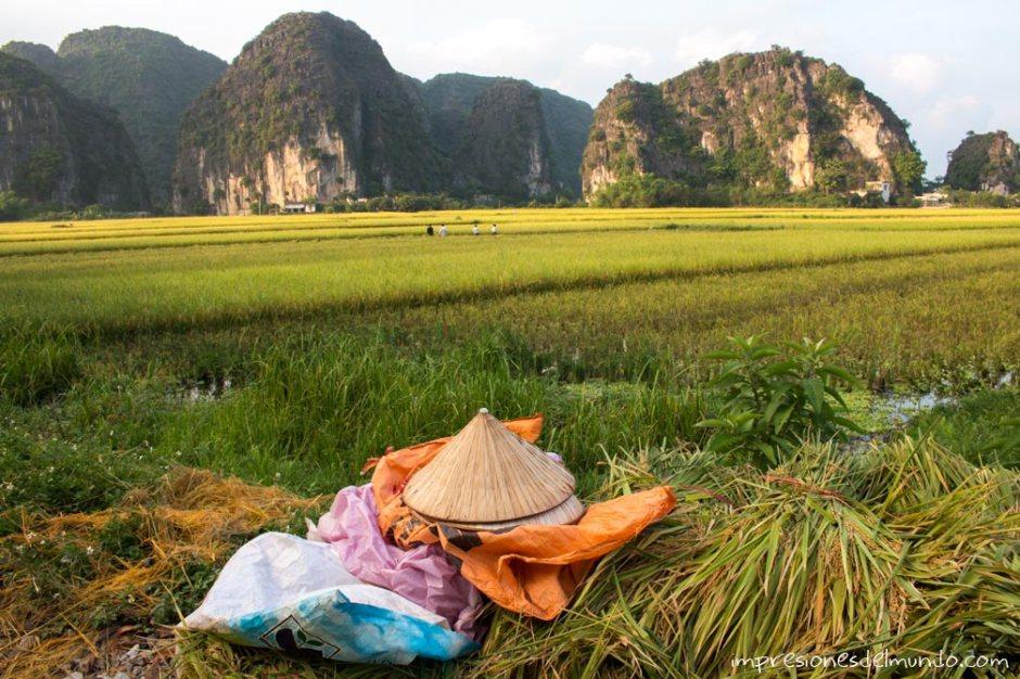 sombrero-vietnamita-Tam-Coc-impresiones-del-mundo