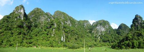 vegetacion-carretera-panorama-Cat-Ba-island-impresiones-del-mundo