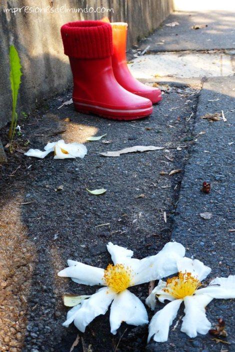 botas-y-flores-Sydney-Impresiones-del-mundo