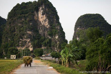 montañas-con-vegetacion-Vietnam-impresiones-del-mundo