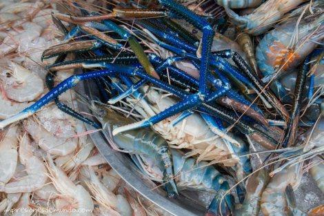 marisco-en-el-russian-market-Phnom-Penh-impresiones-del-mundo