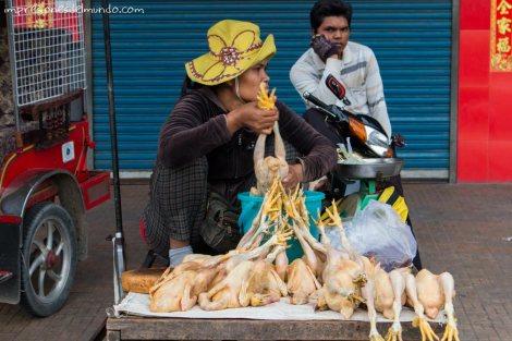 vendedora-de-pollos-Phnom-Penh-impresiones-del-mundo