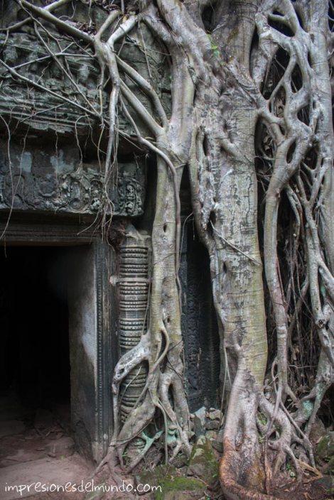 puerta-de-templo-Angkor-Wat-impresiones-del-mundo