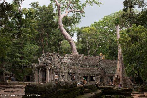 templo-y-naturaleza-Angkor-Wat-impresiones-del-mundo