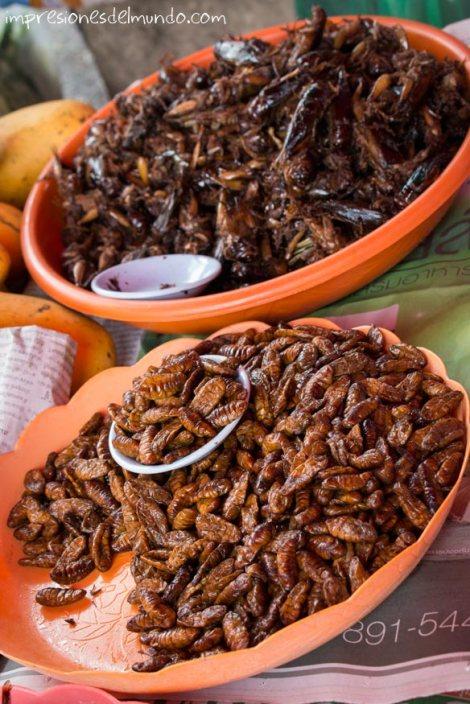 insectos-fritos-Chiang-Mai-Tailandia-impresiones-del-mundo