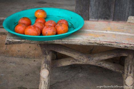 tomates-Mae-Salong-Tailandia-impresiones-del-mundo