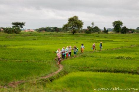 trabajadores-en-el-campo-Myanmar-impresiones-del-mundo