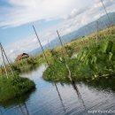 jardines-flotantes-y-casa-Lago-Inle-Myanmar-impresiones-del-mundo