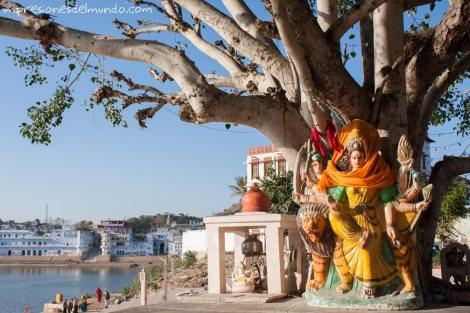 Pushkar-India-impresiones-del-mundo