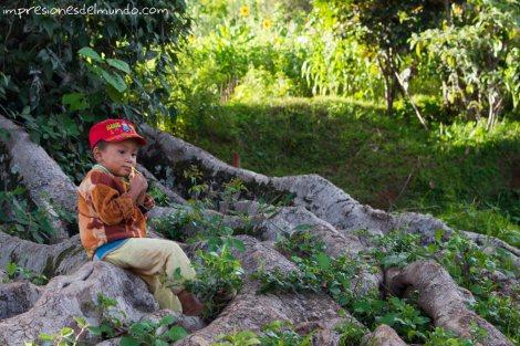 nene-en-el-arbol-Myanmar-impresiones-del-mundo