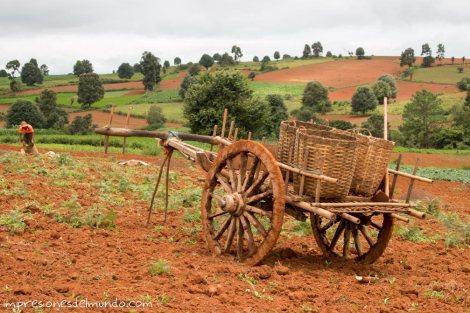 paisaje-y-carro-Myanmar-Birmania-impresiones-del-mundo