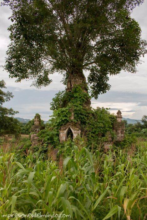 templos-Myanmar-Birmania-impresiones-del-mundo