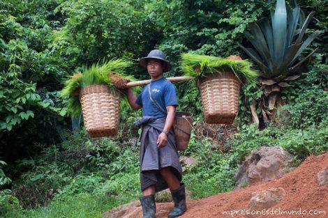 trabajador-Myanmar-Birmania-impresiones-del-mundo