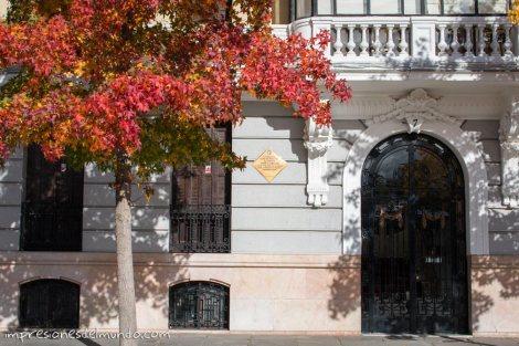 arbol-y-portal-Madrid-impresiones-del-mundo