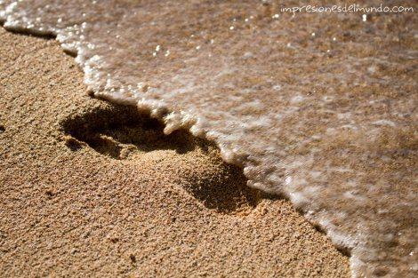 huella-en-la-arena-impresiones-del-mundo