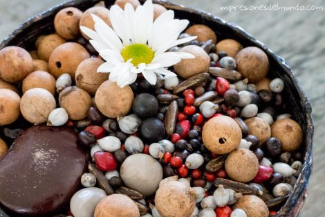 dia-de-la-tierra-semillas-impresiones-del-mundo